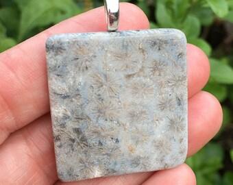 Fossilized Coral Pendant 3-10-3-17