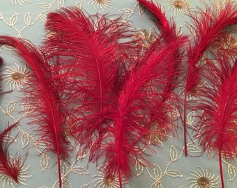 """7 Red feathers, ostrich, set of 7, beautiful dark burgundy RED plumes, ranging from 10"""" to 19"""", majority large"""