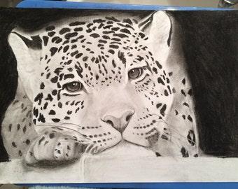 Leanne - Framed original drawing jaguar