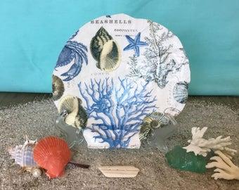 Sealife and Sea Shells Scallop Shell, Coastal Decor Beach, Beach Decor, Nautical, Shell Decorative Plate, Trinket Dish