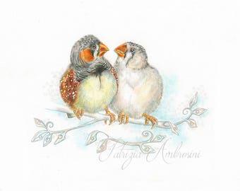 "Original 9,5X8 Watercolour "" The Innamorati "" .. NOT A PRINT, Zebra finches , Handpainted ,home decor, Art, OOAK, bird, lover,"