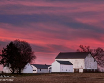 Farm Sunrise Photograph, Patterson Farm, Morning Light, Landscape Photography, Bucks County, Pennsylvania, Pink Sky, Homestead, Art Print