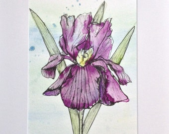 Bearded Iris Watercolor - Original Watercolor Painting - Purple Irises - Iris Ink illustration - Botanical Drawing - Botanical Home Decor