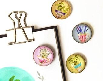 Herb Magnet Set, Herb Refrigerator Magnets, Herb Magnets, Herb Fridge Magnets, 1 Inch Round, Herbs