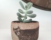 Sale: Ceramic planter with matte black hand-painted cat. Plant holder, Planter, succulent, cactus planter, indoor planter,gift