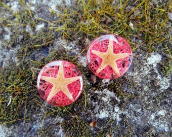 Coral pink gauges mermaid pressed flower jewelry resin jewelry starfish jewelry nature jewelry ear plugs and tunnels pink plugs moss jewelry