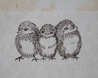 Bird Stationery, Chick Stationery, Letter Writing Set, Stamped Stationery, Baby Bird Stamp, Woodland Paper, Writing Paper, Bird Gift