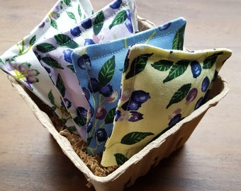 Blueberry Catnip Set, Catnip Toy