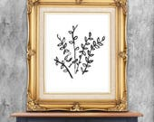 Contemporary and decorative floral art, illustration, digital download, black illustrated twigs and leaves, white background,  digital print