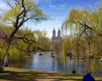 Central Park Bliss Photography Print