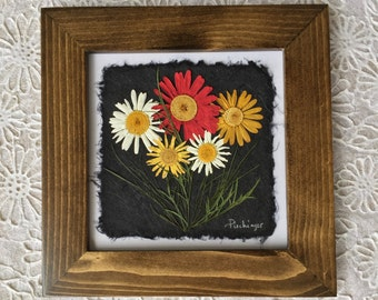 Pressed Multi-Colour Daisy Picture. 8x8. Perfect for Daisy Lovers!! Handmade paper.