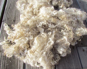 Natural  Ivory White Lincoln Wool Locks hand washed 2 oz