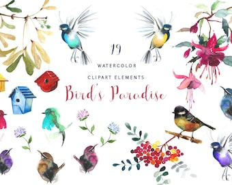 Watercolor Bird Clipart, handpainted watercolor bird illustration, DIY
