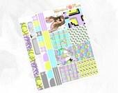 Fit HORIZONTAL Kit - Matte Glossy Erin Condren Horizontal Planner Stickers -