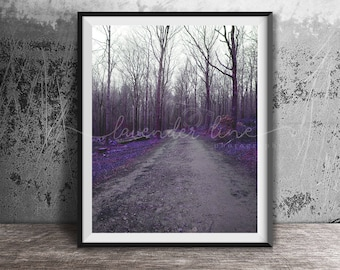 LAVENDER MORNINGS, Colour Photography Print, Tollymore Forest, Northern Ireland, Woodland, Landscape, Nature, Wall Art