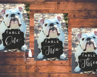 PRINTABLE Wedding table numbers, Pet table numbers, Pet sign, Pet photo, dog sign, chalkboard table numbers, custom table numbers, bulldog