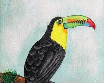 Toucan - Original Watercolor Painting