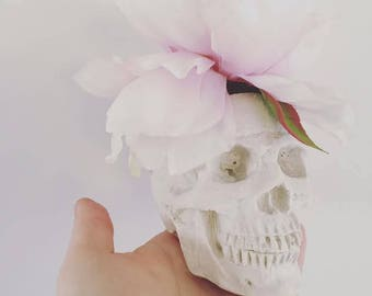 Eclectic and unique, Barbara Anne skull vase