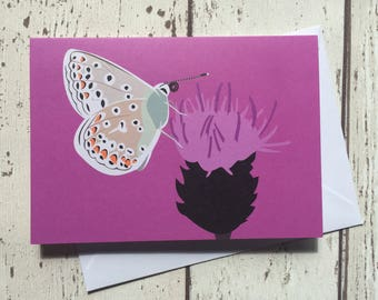 Common Blue butterfly greeting card - blank inside