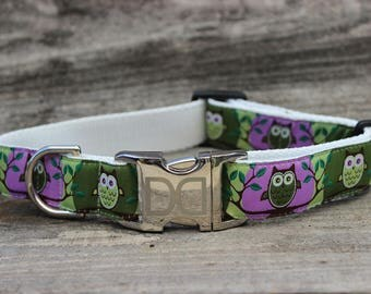 H'Owl Avocado & Grape Dog Collar and Leash