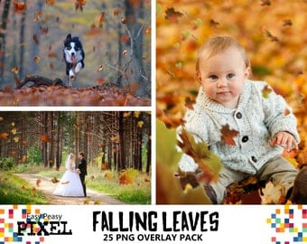 FALLING LEAVES OVERLAYS, Leaves Overlays, Photoshop Overlays, Autumn Leaves, Autumn Overlays, Falling Leaves, Photoshop Leaves, Fall