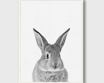 Rabbit,Bunny Rabbit Print, Woodlands Print, Bunny Rabbit Wall Art, Bunny Rabbit Poster, Bunny Rabbit Art, Bunny Rabbit Poster, Animal Prints