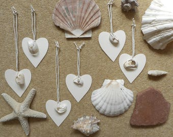 New, Unusual, Unique, Natural, Gift Tags, Seashells, Heart Tag, String, Gift Wrapping, Present Wrapping, Packs of Two, Cream