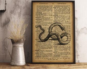 Sea creature Print Nautical Decor Eel poster, Antique eel illustration wall art, Nautical Art Print  (R10)
