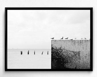 Beach Print, Ocean Print, Nature Print, Beach Photo, Ocean Photo, Nature Photo, Black and White Art, Digital Download, Digital Print