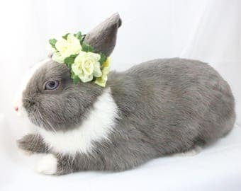 Yellow Satin Flower crown / Bunny crown / Flower crown for rabbits and small pets