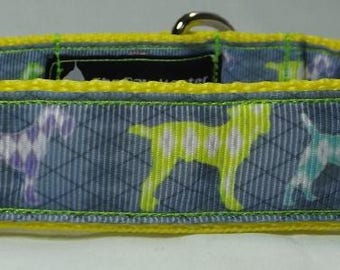 Diamond Argyle Dog Collar - FREE Shipping