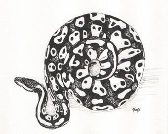 Ink Pen Pet Portrait - MADE TO ORDER