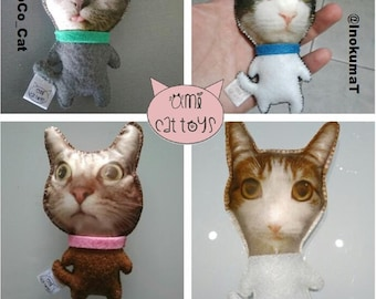 Personalized Cat Toy , Personalized Catnip toy, Personalized Valerian toy