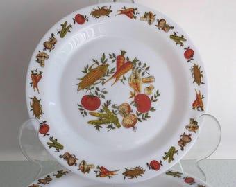 Bord Arcopal France vegetable decor diner plate retro vintage groente oogst print
