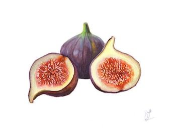 Original Watercolor, Still life Painting, Still Life with Figs, Figs Watercolor Painting, Fruits Watercolor, Home Kitchen decor