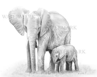 "A4 artist print. ""Mothers watchful eye"". African Elephants graphite sketch."