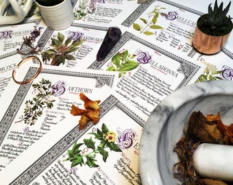 10 Herb Bundle #5  - INSTANT DOWNLOAD Book of Shadows Pages : Belladonna, Mandrake, Mugwort and more