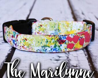 "Dog Collar- Multi-Color Dog Collar, Chic Dog Collar, Colorful Dog Collar, Girl Dog Collar, Trendy Dog Collar, ""The Marilynne"""