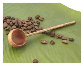 Hawaiian Handmade Coconut Wood Coffee Scoop From from Maui, Hawaii