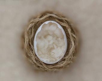 Egg Digital Backdrop, Egg Newborn Backdrop, Egg Digital Background, Egg Digital Prop, Newborn Egg Prop, Newborn Photography Egg Background