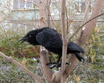 Felted raven - Raven bird- realistic bird - handmade felt toy