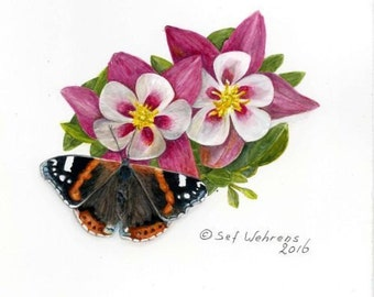 Fine art painting, watercolor, butterfly, Red Admiral butterfly