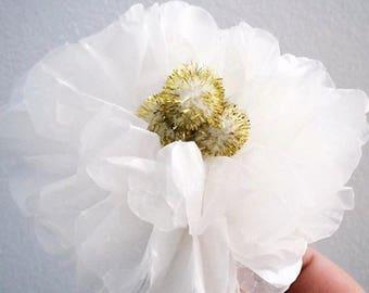 Dozen Paper Flowers