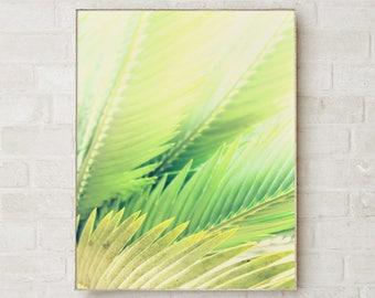 Nature Photography Prints Nature Print Art Prints Nature Art Canvas Wall Art Canvas Print Fine Art Photography Giclee Print Canvas Art Green