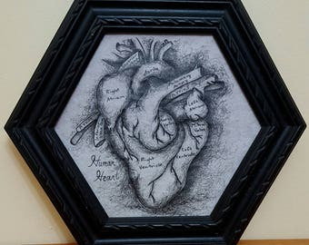 Vintage Style Anatomical Heart
