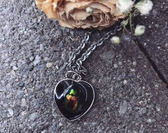 Real beetle necklace