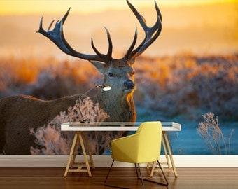deers wall mural, wall mural nature, hunting wallpaper, self-adhesive vinly, forest wall mural, deer, deers forest, animals wallpaper
