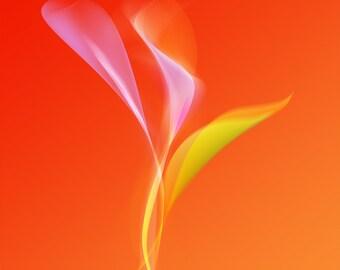 """Floral volutes """"Orange."""""""