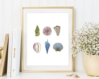 Seashells Illustration Print, Beach Print, Seashell Drawing, Nautical Print, Beach Wall Art, Beach Print, Seashell Art