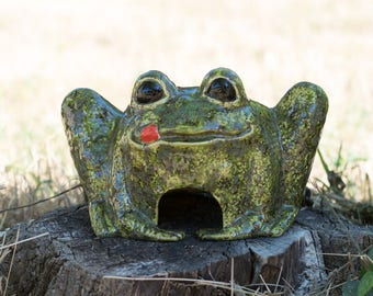 Froggy Frog House